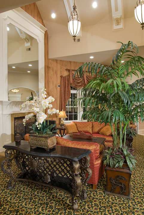 Sitting area with orchid and plants